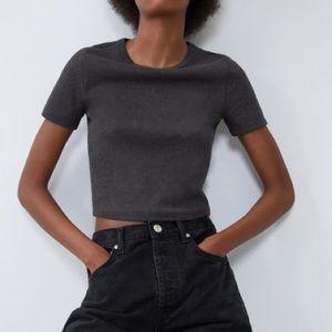 Zara Scalloped Collar Grey Ribbed Crop Top